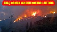 Kastamonu Araç'taki Orman Yangını Kontrol Altında