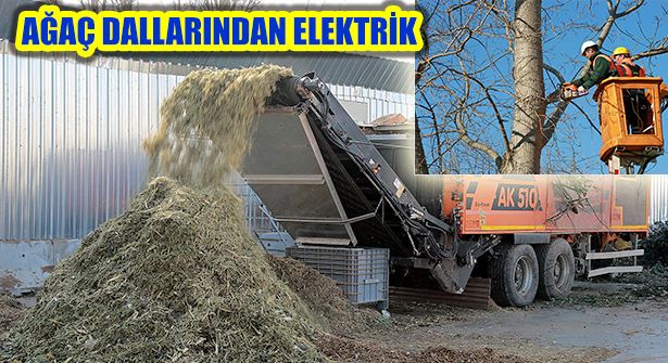 Ataşehir'in Ağaç Dalları Elektriğe Dönüşüyor