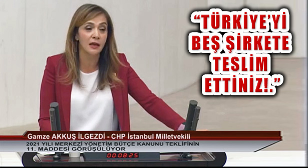 Gamze Akkuş İlgezdi 'Türkiye Cumhuriyeti Beş Şirketten Büyüktür'