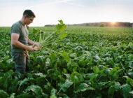 Çevresel Endişe Gıdada Satın Alma Alışkanlıklarını Etkiliyor