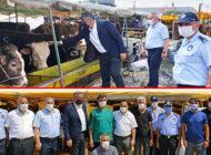 Ataşehir Belediyesi Kurban Satış Ve Kesim Alanlarını Denetliyor