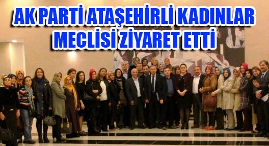 M.CEVAT ARZIK 'DEMOKRASİ, TÜRKİYE KAZANDI'