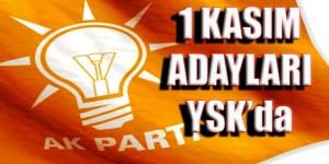 ak_parti -aday - ysk
