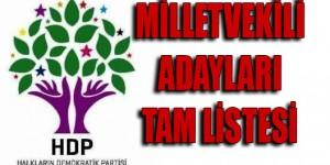 hdp_aday_tam_liste